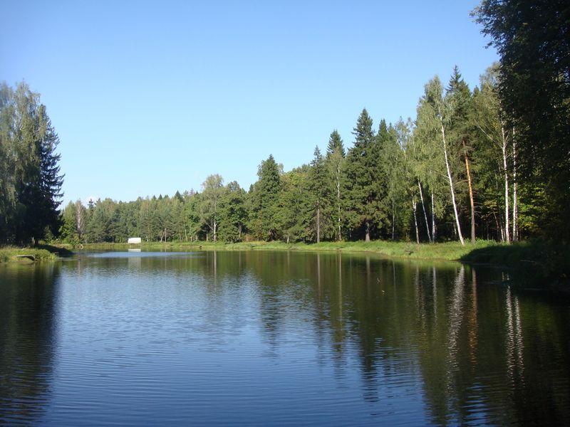 парк лосиный остров рыбалка бесплатно