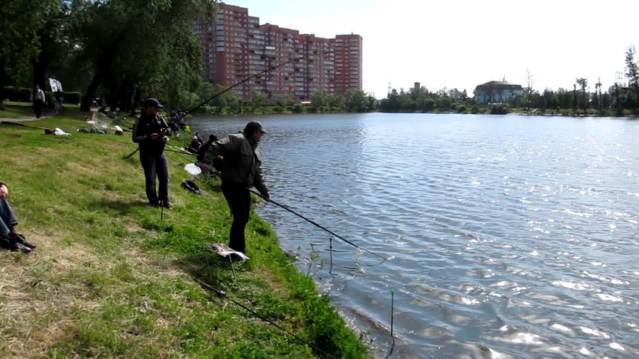 Рыбалка Белая дача