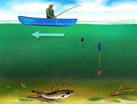 Ловля сома на донку с берега