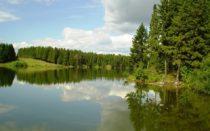 Куда поехать на рыбалку в Ленинградской области?
