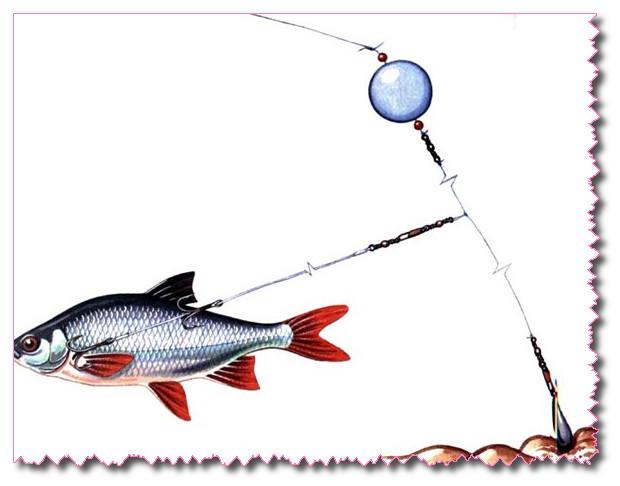 Как ловить щуку на живца
